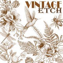 Vintage Etch